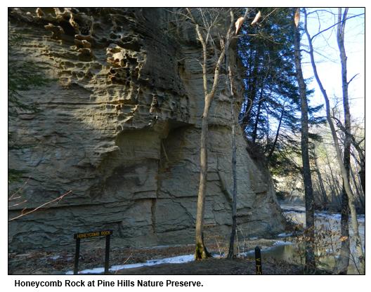 Honeycomb Rock at Pine Hills Nature Preserve.