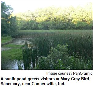Mary Gray Bird Sanctuary.