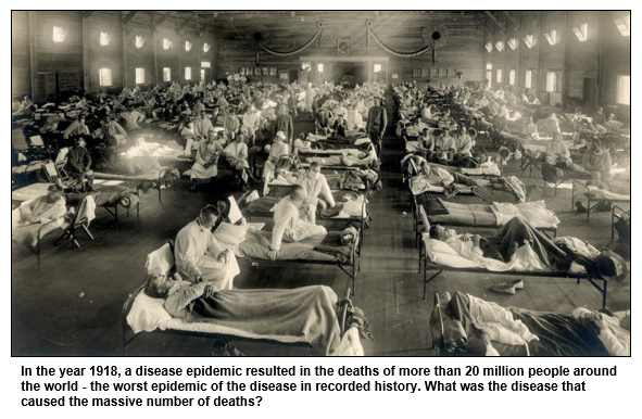 In the year 1918, a disease epidemic resulted in the deaths of more than 20 million people around the world - the worst epidemic of the disease in recorded history. What was the disease that caused the massive number of deaths?