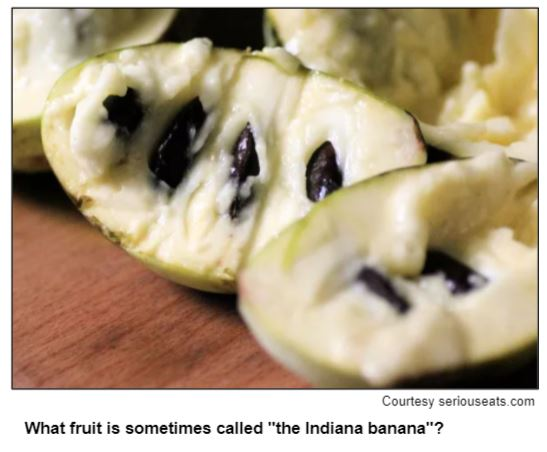 """What fruit is sometimes called """"the Indiana banana""""? Courtesy seriouseats.com"""