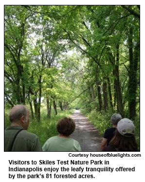 Visitors to Skiles Test Nature Park in Indianapolis enjoy the leafy tranquility offered by the park's 81 forested acres.    Courtesy houseofbluelights.com
