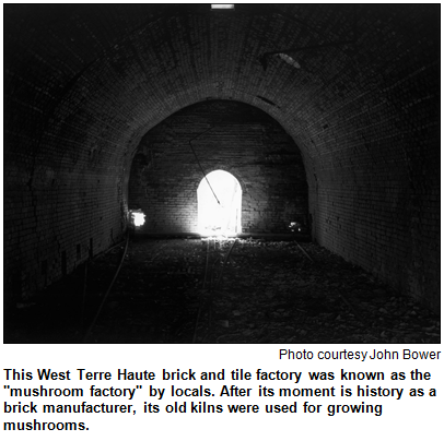 Brick and tile kiln in West Terre Haute that later was used for growing mushrooms. Photo by John Bower.
